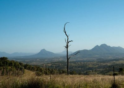 Mountain views in the Scenic Rim